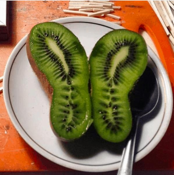 Ugly kiwi