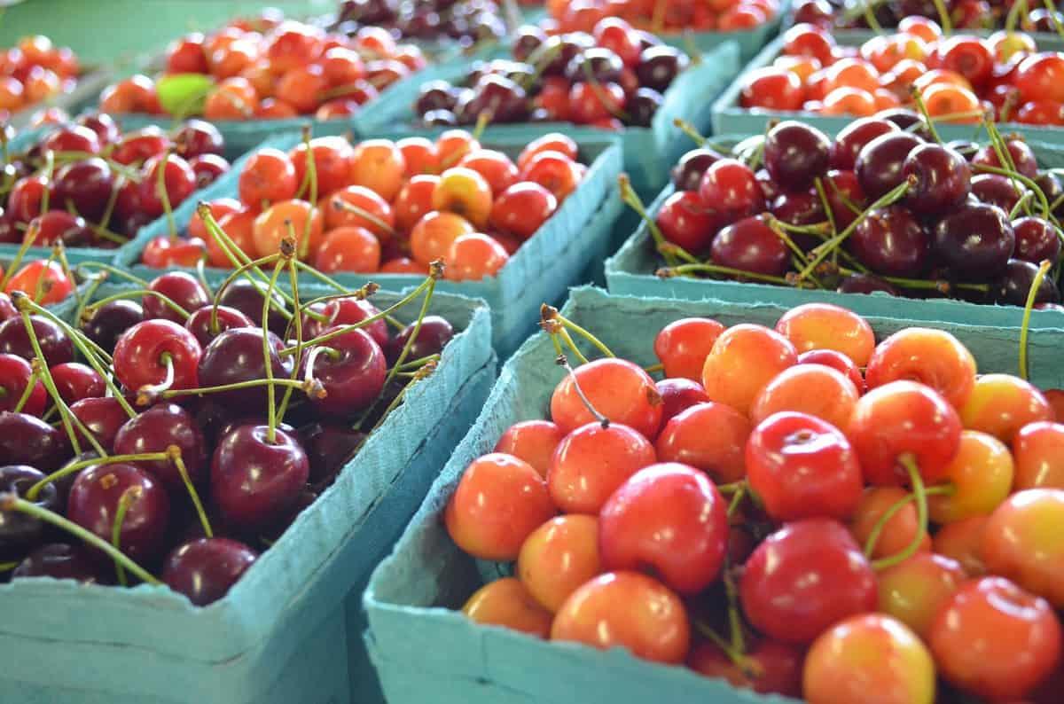 In Season Fruit