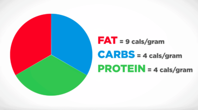Calories per each Macronutrient