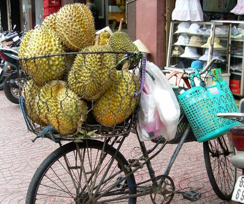 bicycle carrying jackfruit
