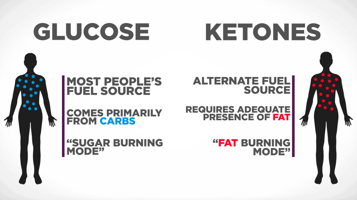 Glycolysis vs Ketosis