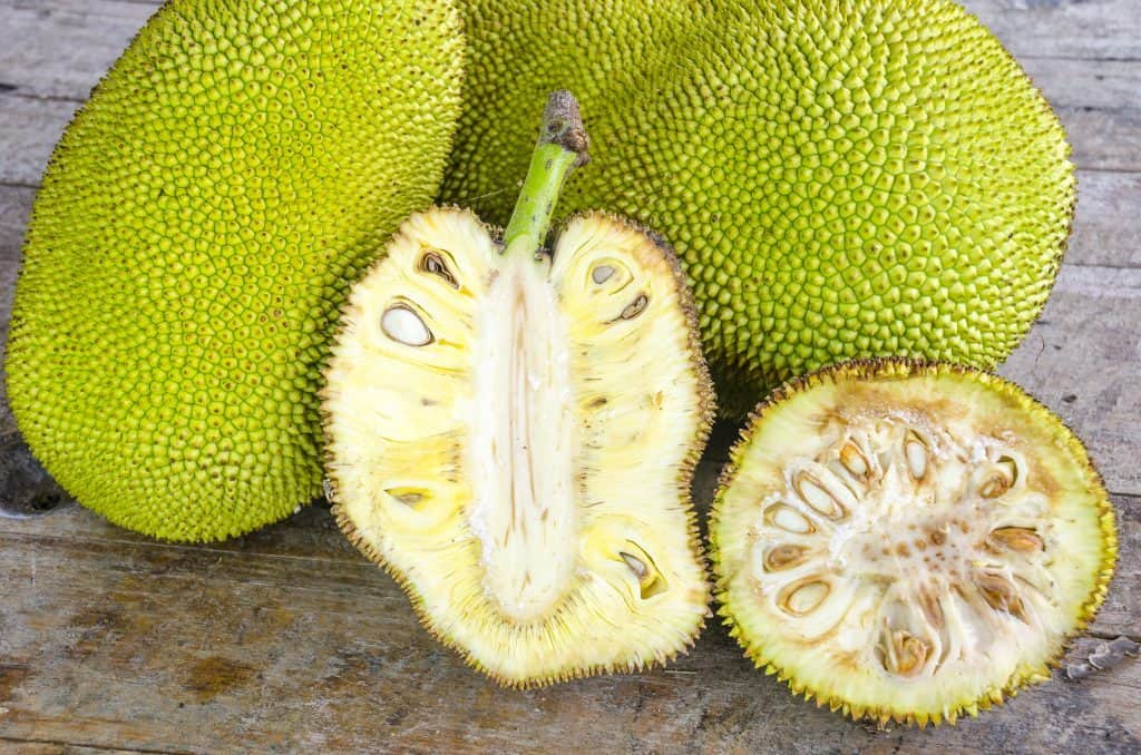 how to eat jackfruit, how to cook jackfruit, how to prepare jackfruit, vegan jackfruit recipes