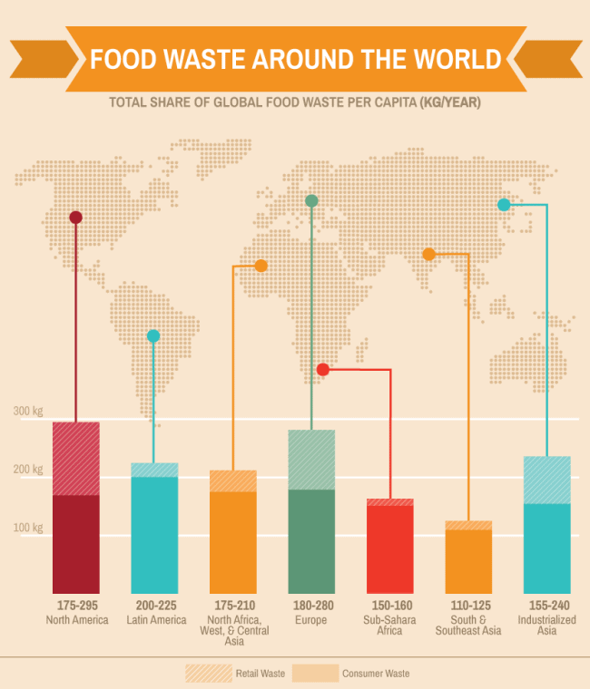World Food Waste, how to reduce food waste, food waste in America, food waste prevention, how to save food