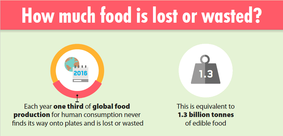 Global Food Waste, Food Waste in America, what is food waste