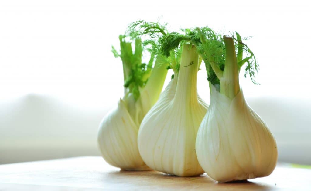 How to cook fennel, what does fennel taste like, how to prepare fennel, how to store fennel, fennel nutrition, recipes with fennel