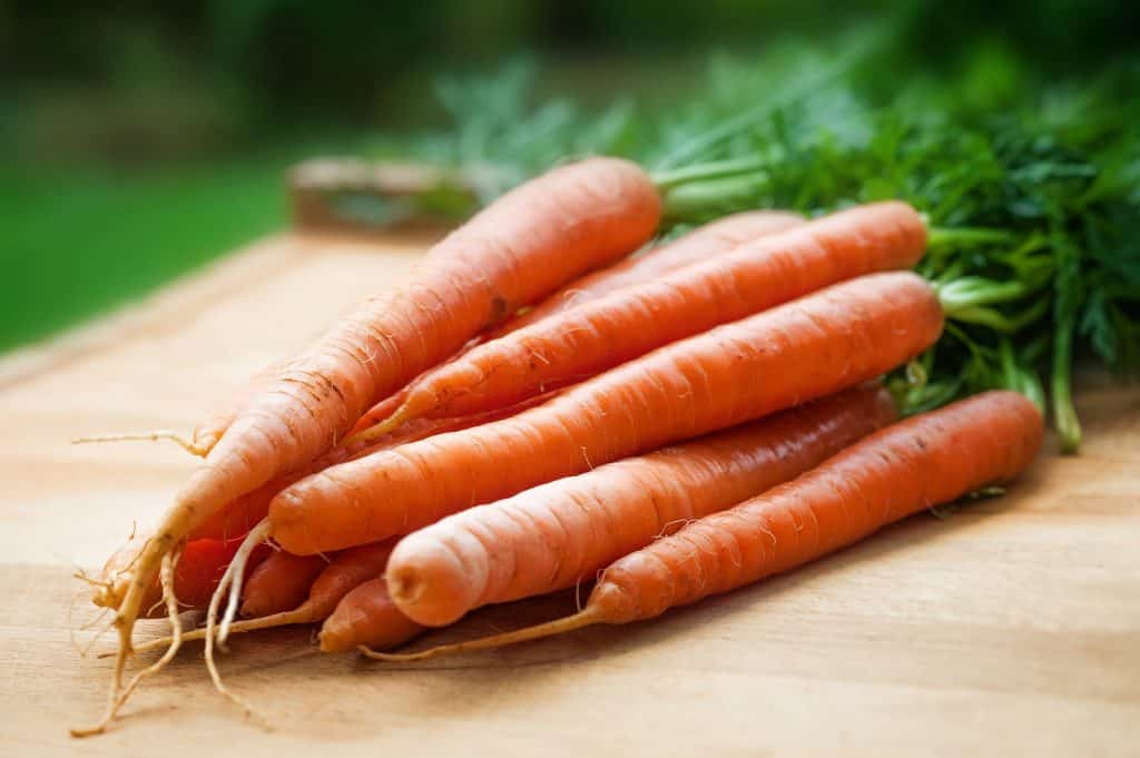 Carrots Nutrition, carrot recipes, what are carrots good for, how to cook carrots, how to choose carrots, how to store carrots, recipes with carrots, carrots flavor pairings