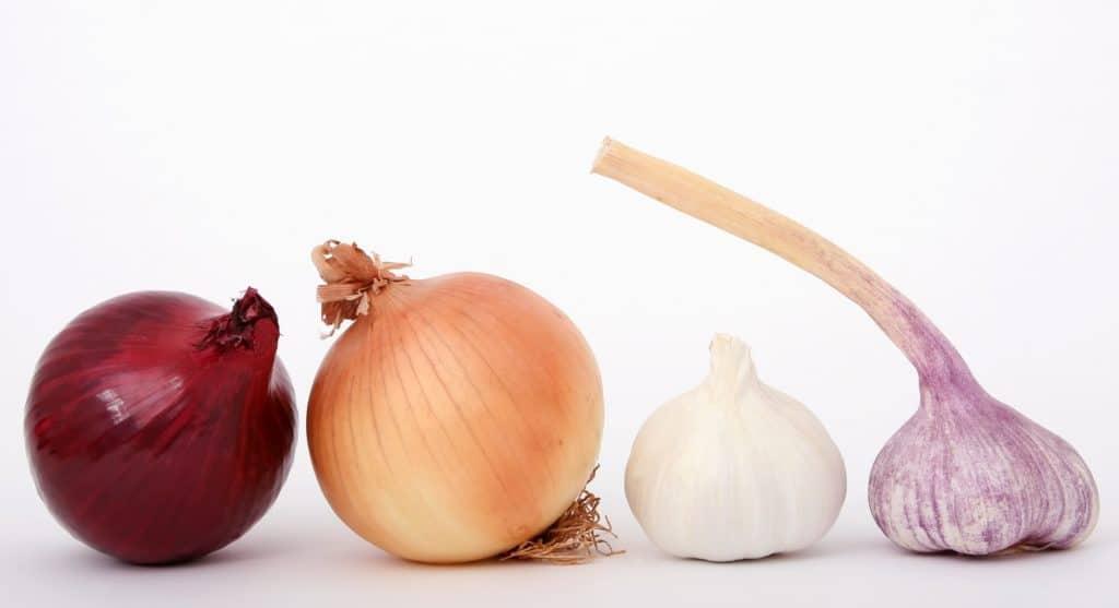 Common Food Sensitivities