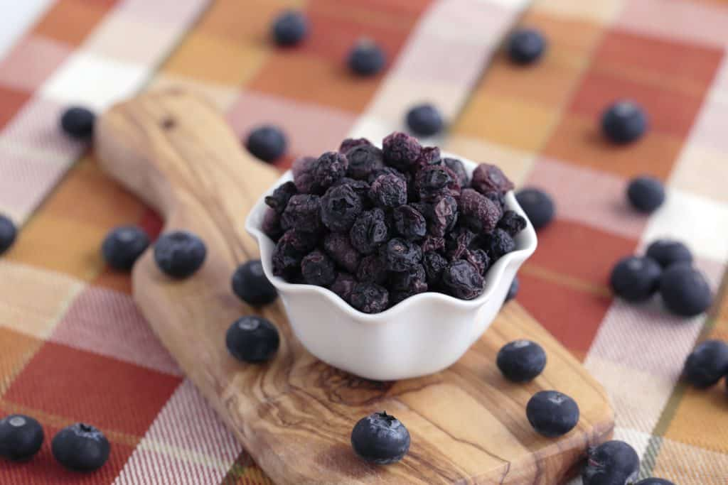 Vegetarian Meal Prep Recipes, homemade dried blueberries, homemade dried fruit, easy vegetarian recipes for beginners, easy healthy recipes