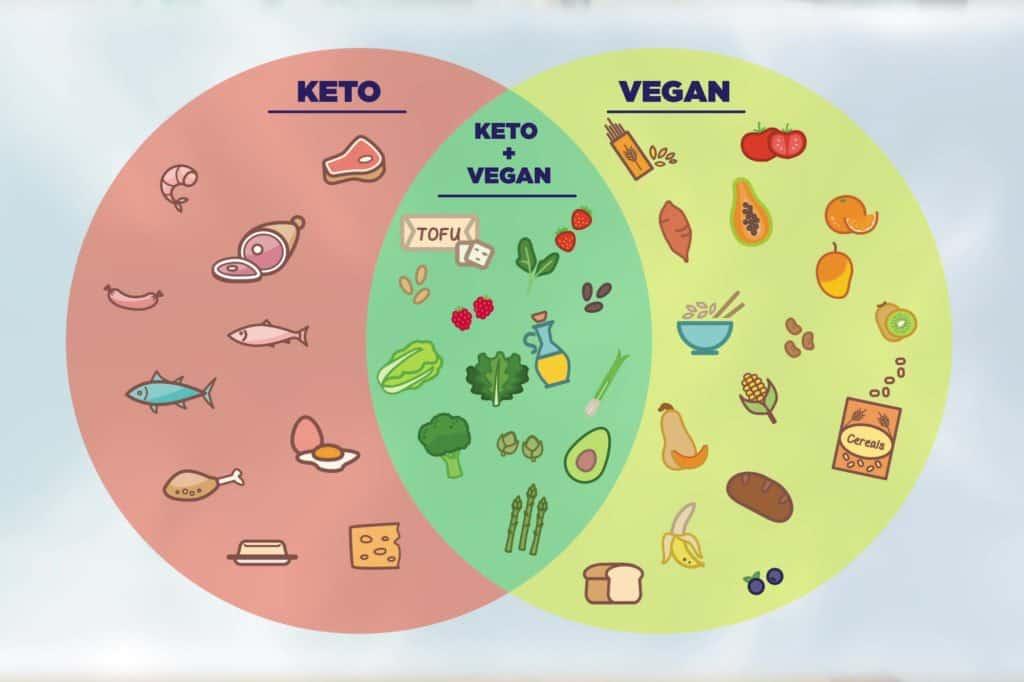 Vegan vs Keto, Keto vs Vegan, vegan keto recipes, keto and vegan, can you be vegan and keto, vegan keto meal prep, low carb vegan diet, vegetarian ketogenic diet, vegan keto meals, vegan keto meal plan