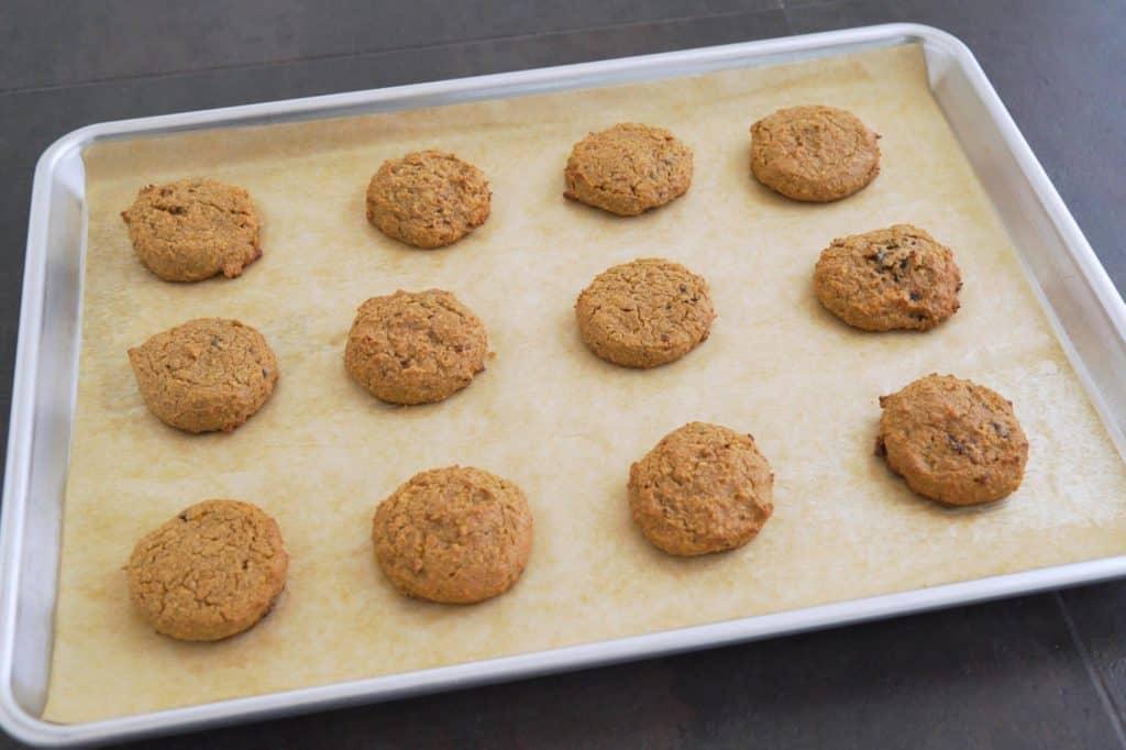 Coconut flour oatmeal cookies
