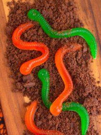 Homemade Gummy Worms