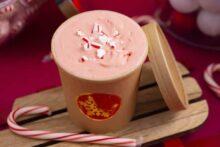 Dairy Free Peppermint Ice Cream Recipe