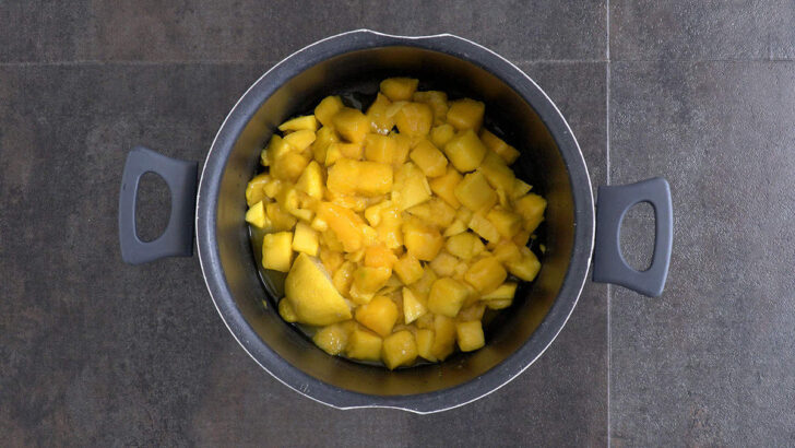 Add chopped mango, lemon juice, lemon rind, and a splash of water to a pot. Cover and cook over low heat for ~30 minutes.